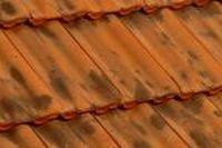 Dachówka ceramiczna Imerys Delta 10 Vieilli Nuancé Sur Fond Rouge